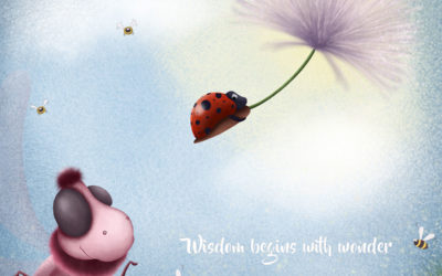 Wisdom begins with wonder